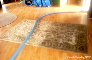rug cleaning service ny